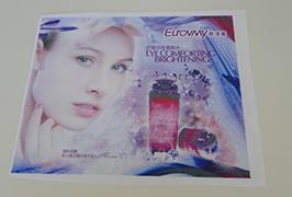 Lipputuote banneri, painettu 1,6 metrin (5 jalkaa) eco-liuotin-tulostimella WER-ES160 4