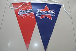 Lipputuote banneri, joka on painettu 1,8 m: n (6 jalat) eco-liuotin-tulostimella WER-ES1801 2