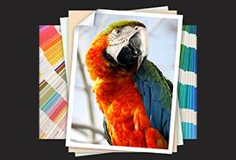 Valokuvapaperi on tulostettu 1,8 m: n (6 jalkaa) eco-liuotin-tulostimella WER-ES1802